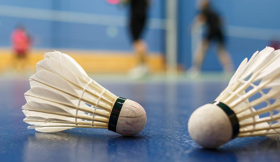 Badminton Direkleri