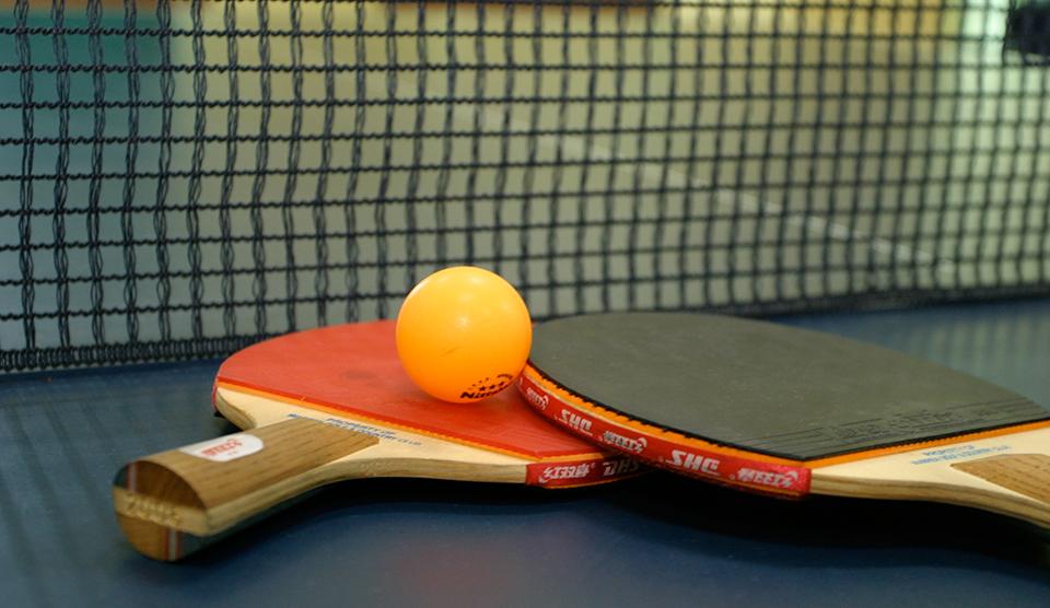 Tenis Masaları